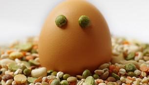 Katerfrühstück - Linsen, Bohnen, Rührei: die wirksamere Alternative zum Rollmops