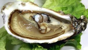 Austern: geballte Zinkpower. Auch Fisch und andere Meeresfrüchte sind zinkreiche Lebensmittel.