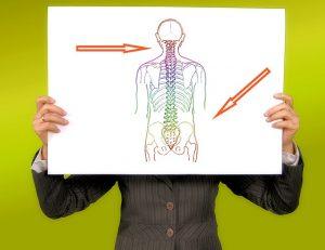 Wie Schmerzen durch Anregung des eigenen Bewegungsapparates therapiert werden können *