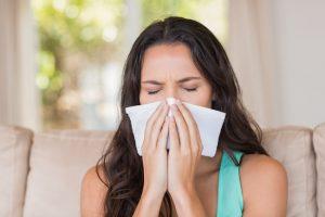 Zimmerpflanzen Allergien - apotheken-wissen.de