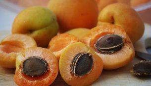 Aprikosen, Aprikosenkerne - apotheken-wissen.de